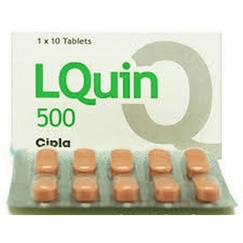 エルクイン 500mg 2箱 / LQuin 500mg 2 boxes